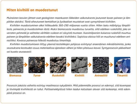 kivihiilen-muodostuminen